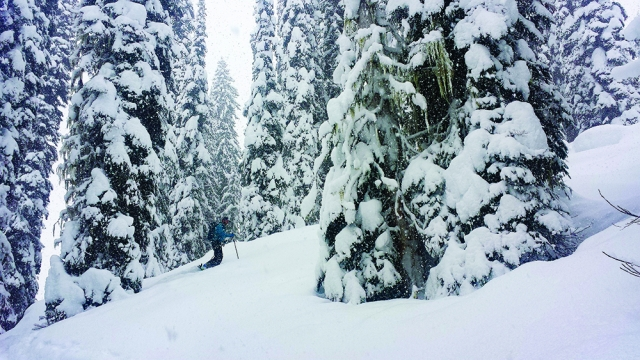 A-skier-skins-up-on-a-stormy-day-in-the-Monashees-640x360